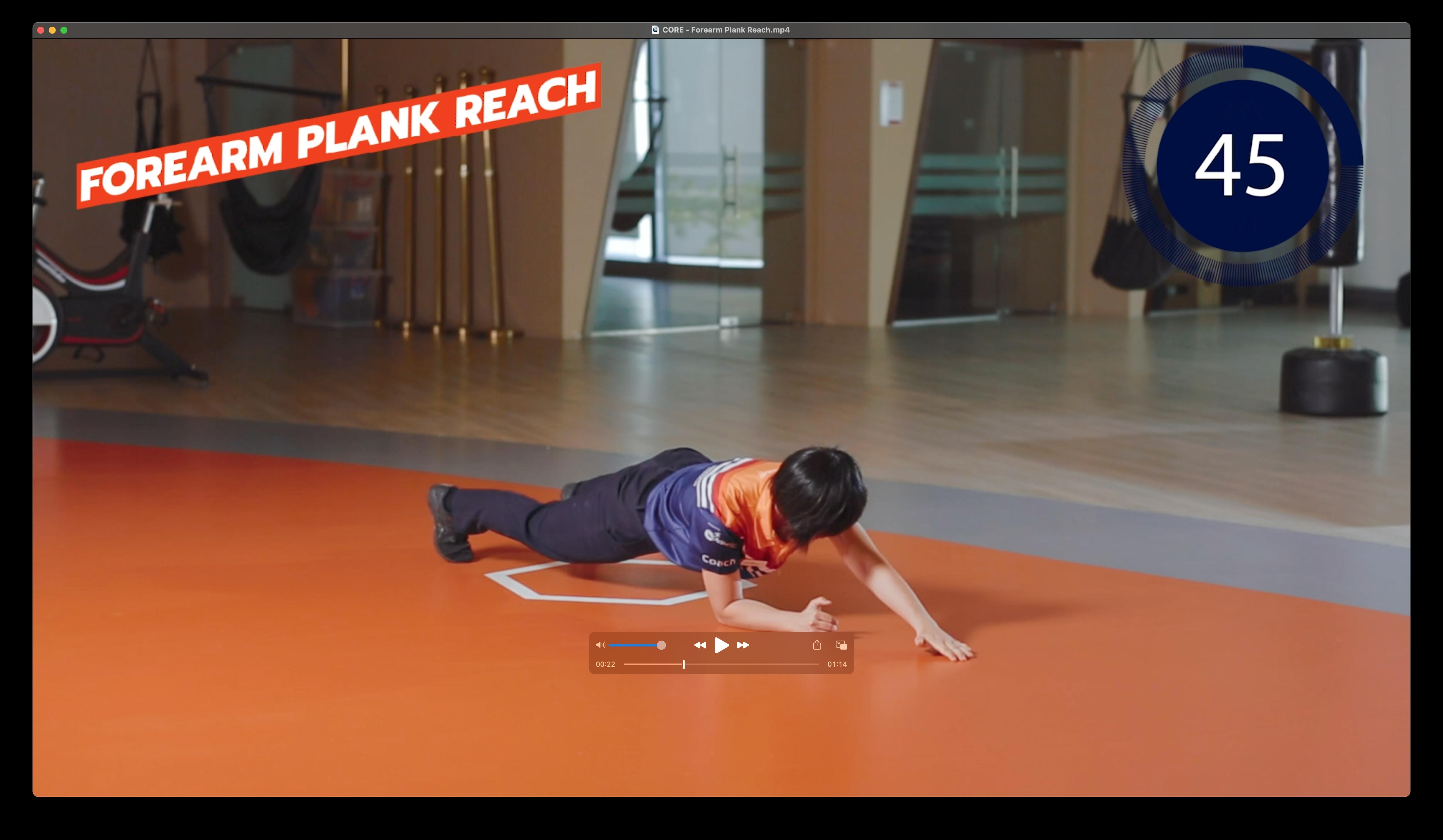 Forearm Plank Reach