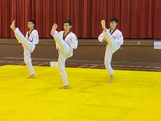 NSG Taekwondo : Punches, kicks and shouts as TKD athletes perform their best routines on camera!