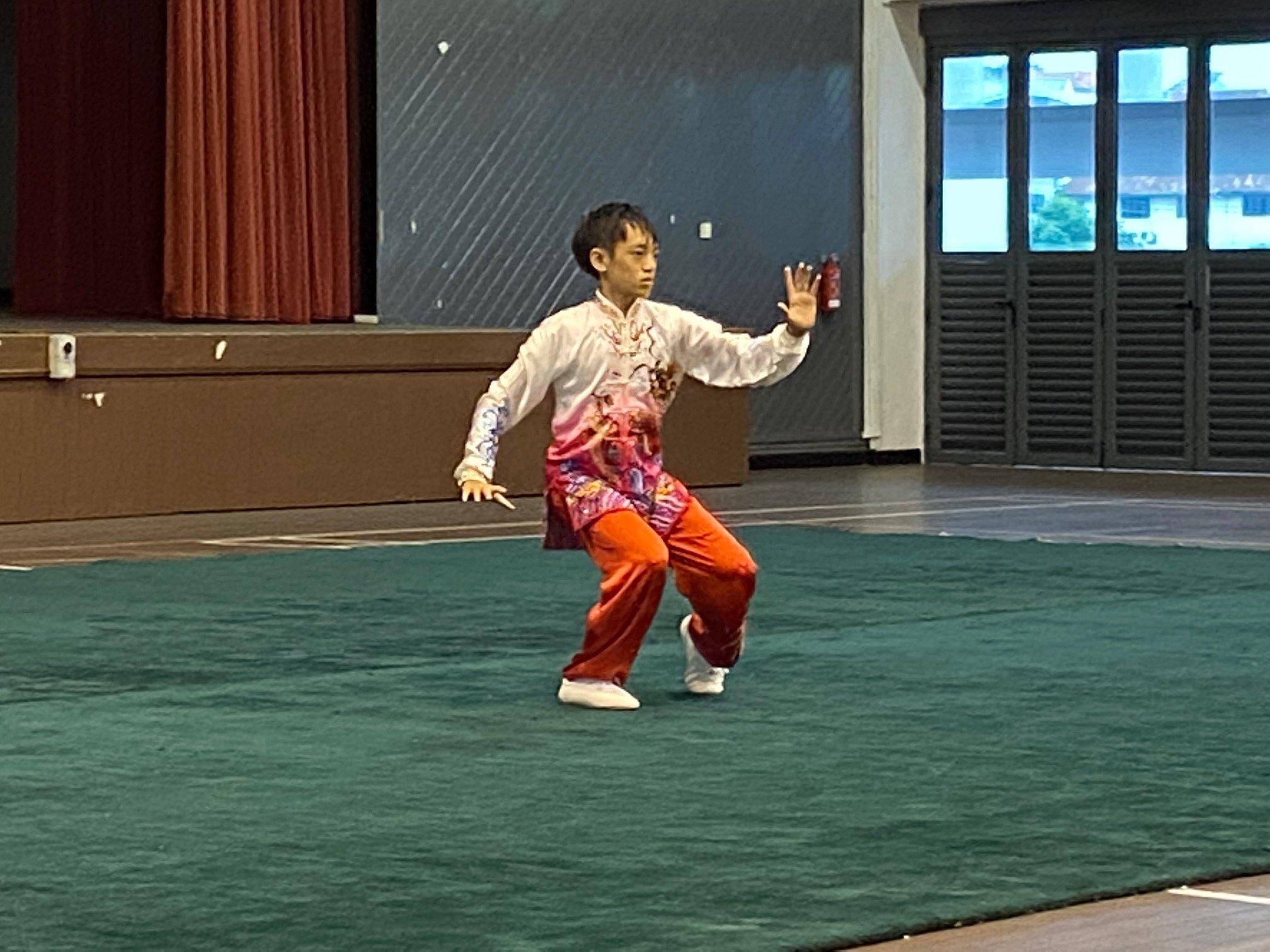 NSG A Div wushu - taijiquan