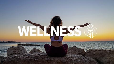 478x269-wellness3