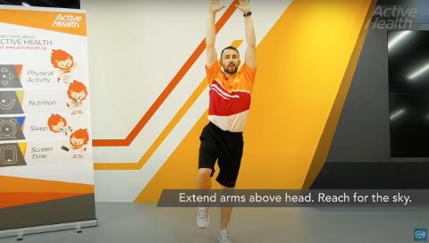 Active Health Exercises For Adults - Single Leg Balance With Overhead Reach Thumbnail