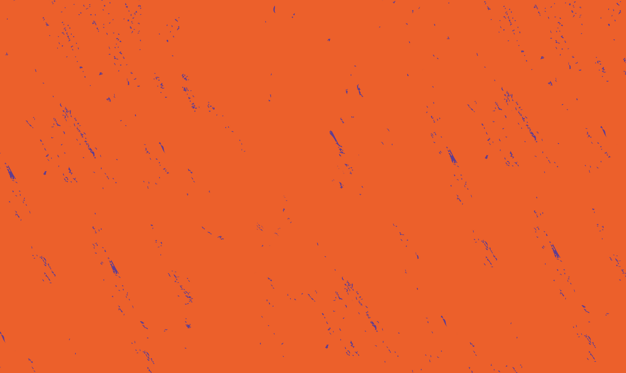 Orange banner with brush